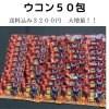 闘牛戦士ワイドーウコン50包  3200円送料込み!! ☆オリジナルクリアファイル付き☆