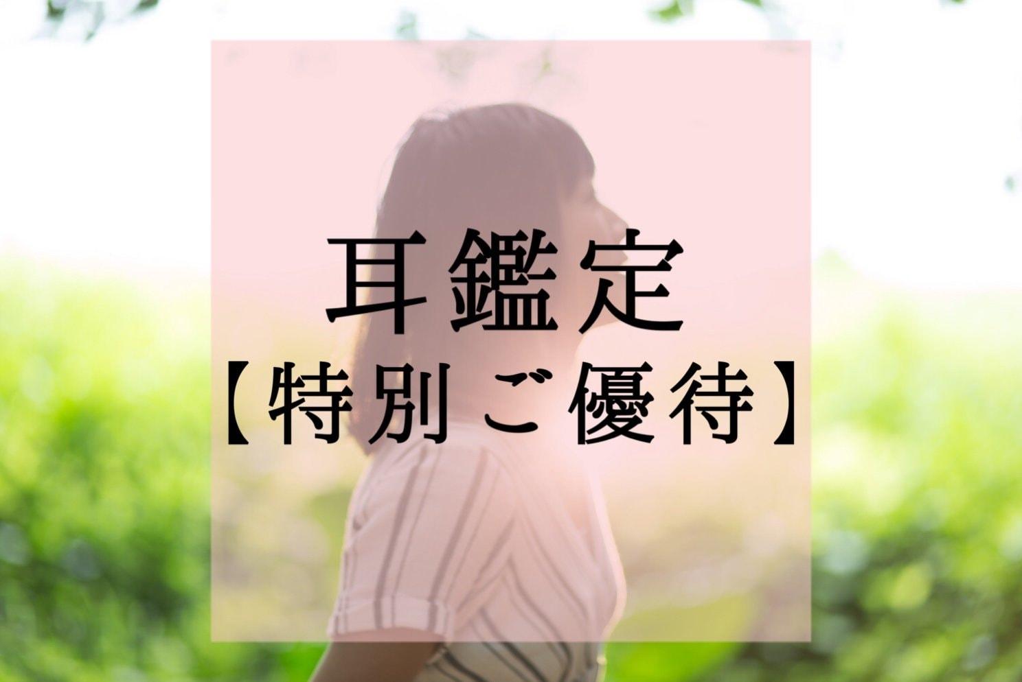 【特別ご優待】耳鑑定®︎(期間限定モニター価格)のイメージその1