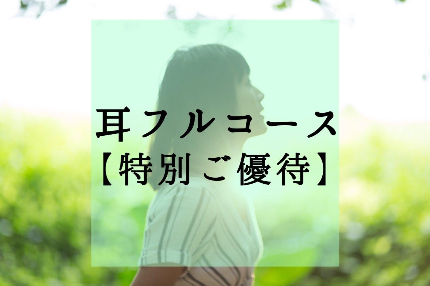 【特別ご優待】耳フルコース(期間限定モニター価格)のイメージその1