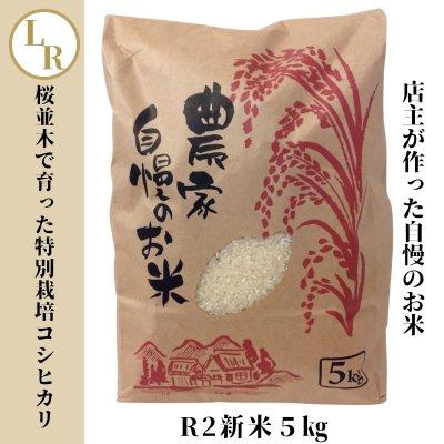 R2新米5㎏[桜並木で育った特別栽培コシヒカリ](数量限定50セット)/新...