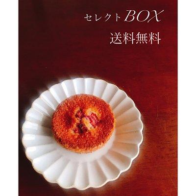 【送料 無料】 ☆秋商品追加☆ お好きな焼き菓子 9個 セレクトBOX