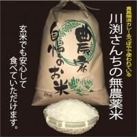 るつぼやの安心安全な無農薬米を家庭でも  川渕さんちの無農薬米10㎏(白米での提供か玄米での提供をお選びください)【兵庫県認証食品 取得】