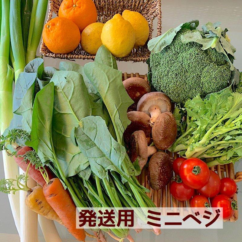 発送用ミニベジセット(送料込み) Eベジ野菜が5〜6品!のイメージその1