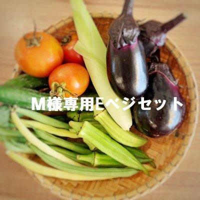 M様専用Eベジ野菜