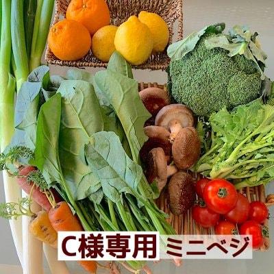 Y様専用Eベジ野菜