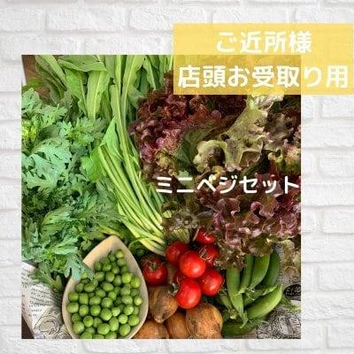 ミニベジセット週1会員(店内お受取り) Eベジ野菜が5〜6品!