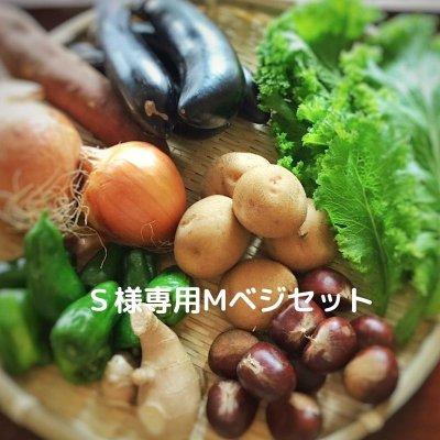 S様専用Eベジ野菜
