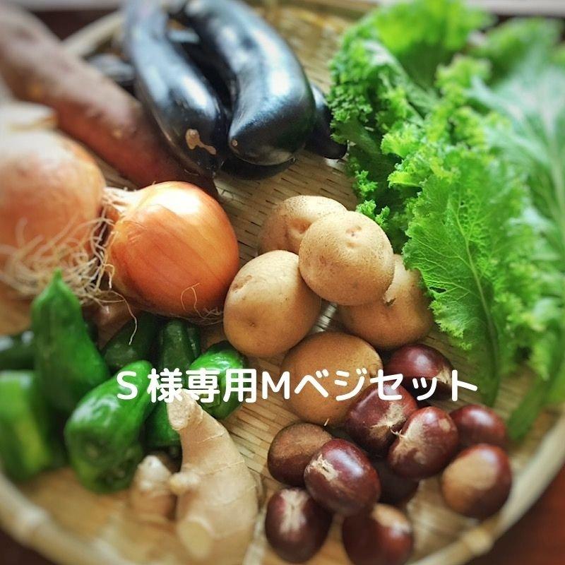 S様専用Eベジ野菜のイメージその1