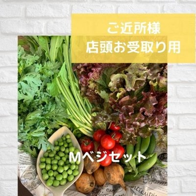 Mベジセット隔週会員(店内お受取り) Eベジ野菜が11〜12品!