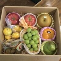 旬のフルーツ 詰め合わせ Aセット