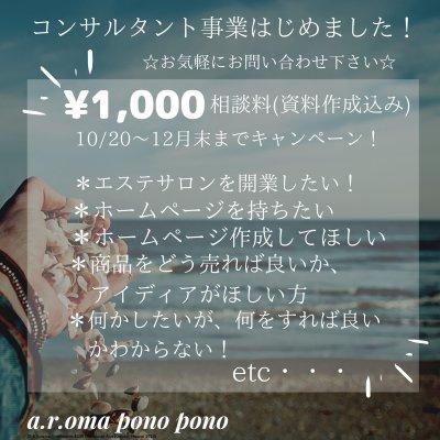 【現地払い専用】ウェブチケット!コンサルタント事業はじめました!¥1,000(10月〜12月キャンペーン)《資料作成込み》