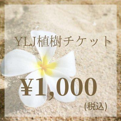 【現地払い専用】 YLJ植樹チケット¥1000