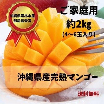 (2㎏)すみちゃんおばぁの自慢のマンゴー/マンゴー通販/スターフルーツ通販/沖縄/美味しさいっぱい/すみちゃんおばぁのくだもの畑