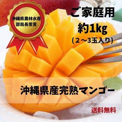 (1㎏)すみちゃんおばぁの自慢のマンゴー/マンゴー通販/スターフルーツ通販/沖縄/美味しさいっぱい/すみちゃんおばぁのくだもの畑