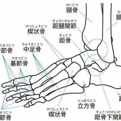 足関節で全身調整