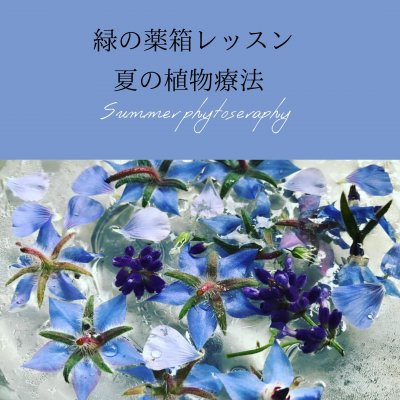 【オンライン&教室】緑の薬箱レッスン〜夏の植物療法