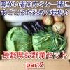 長野県産お野菜セットpart2