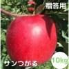 【ノウフクりんご】サンつがる(贈答用)10Kg