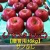 【ノウフクりんご】サンふじ(贈答用)10Kg