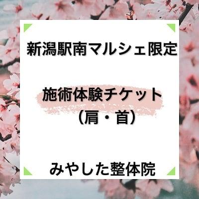 新潟駅南マルシェ限定!みやした整体施術体験チケット【首/肩こり】
