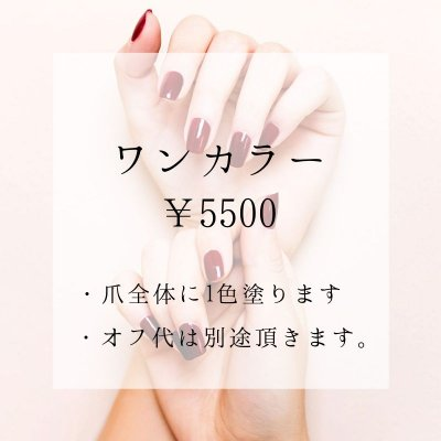 【店頭払い専用】ジェルワンカラー (全体塗り)