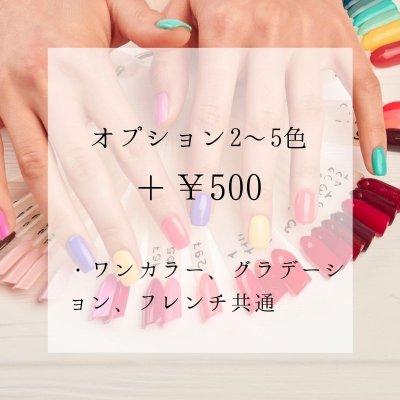 【店頭払い専用】2〜5色 (ワンカラー・グラデーション・フレンチ共通)