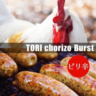 TORIチョリソー(ブルストソーセージ) ×3本入り【冷凍発送】