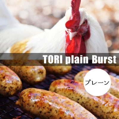 TORIプレーン(ブルストソーセージ) ×3本入り【冷凍発送】