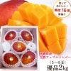 沖縄県産完熟アップルマンゴー 優品2kg(4〜5玉入り)身近な人への贈り物に! お中元 ギフト