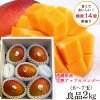 沖縄県産完熟アップルマンゴー 良品2kg(5〜6玉入り)傷・色むらあり 大きさバラバラ