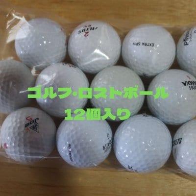 ゴルフ・ロストボール Lost Ball(各種混合)12個入チケット