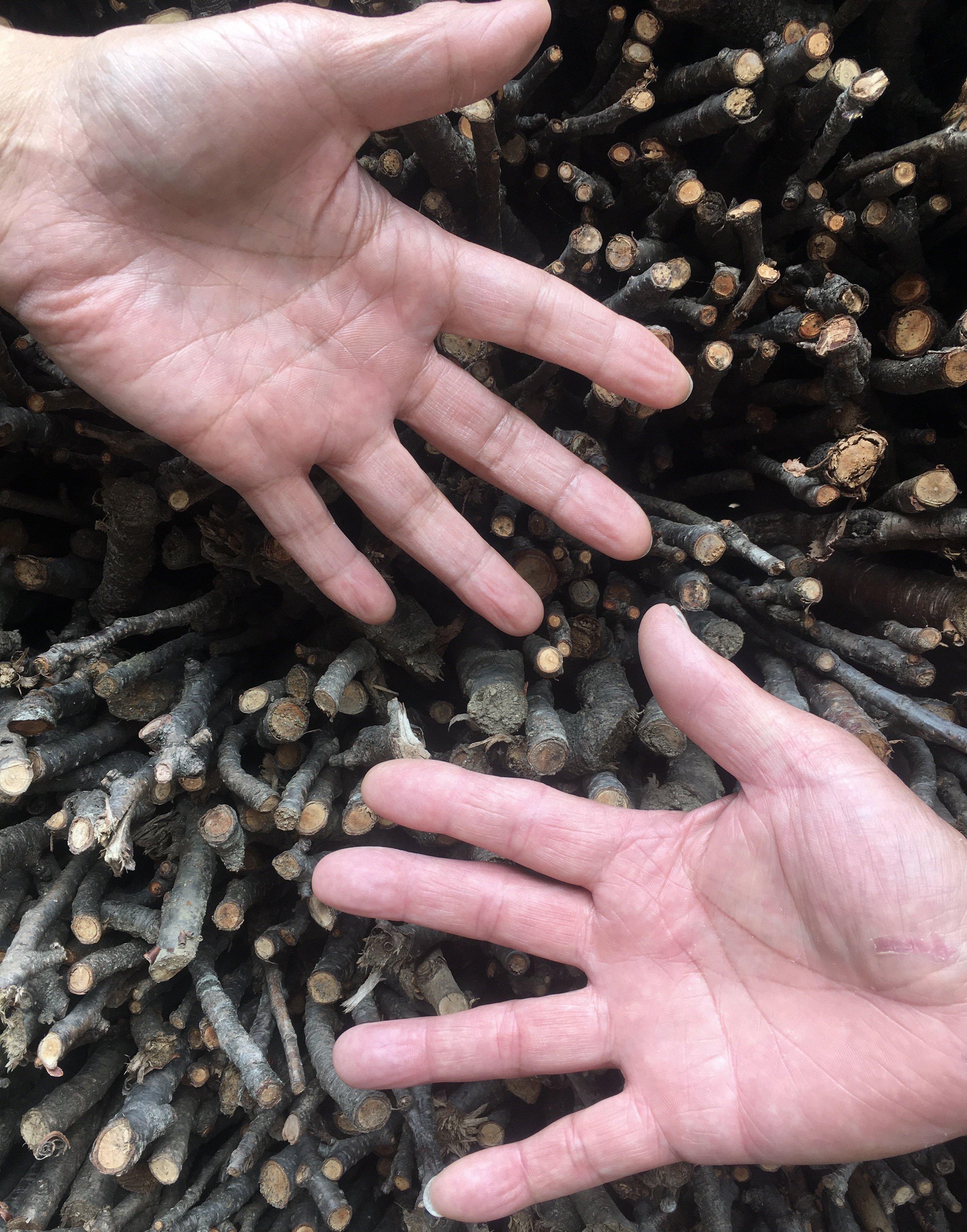 薪屋きすけ 薪(規格外木材自然なり)薪づくり作業体験 ご相談・お見積もりのイメージその6
