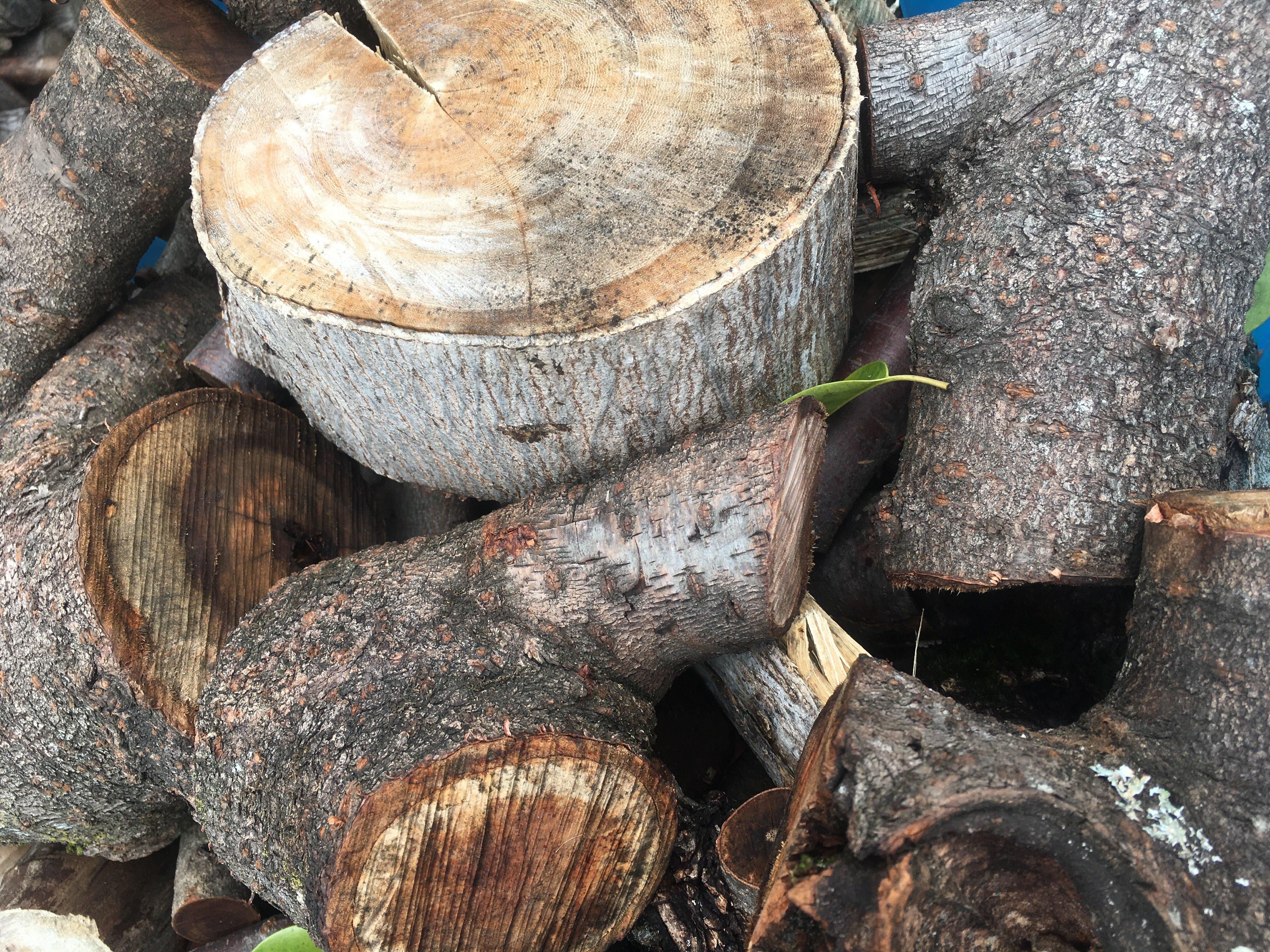 薪屋きすけ 薪(規格外木材自然なり)薪づくり作業体験 ご相談・お見積もりのイメージその5