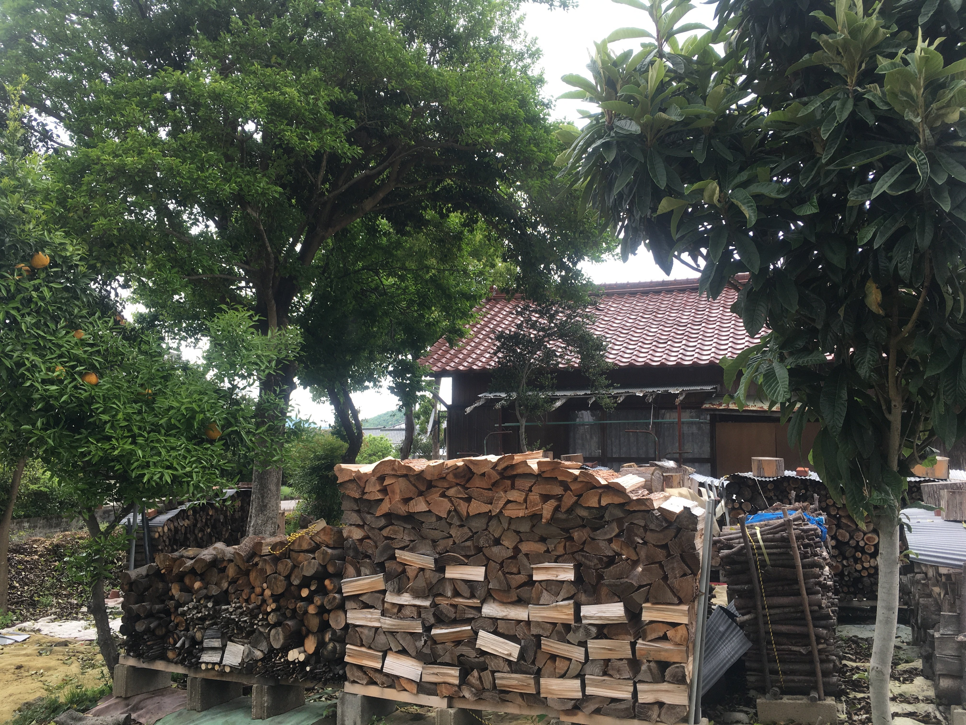薪屋きすけ 薪(規格外木材自然なり)薪づくり作業体験 ご相談・お見積もりのイメージその2