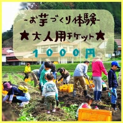 蜂蜜みたいに甘い森の絹【お芋づくり体験〜大人用チケット〜】募集中!!