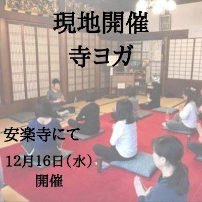 【寺ヨガ】 安楽寺本堂にて現地参加「12月16日(水)」