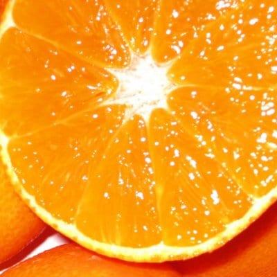 高級柑橘 紅まどんな 3kg 贈答用【MUSOU SELECT】