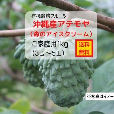 沖縄産アテモヤ 約1kg(3〜5玉)(ご家庭用)〜有機栽培〜