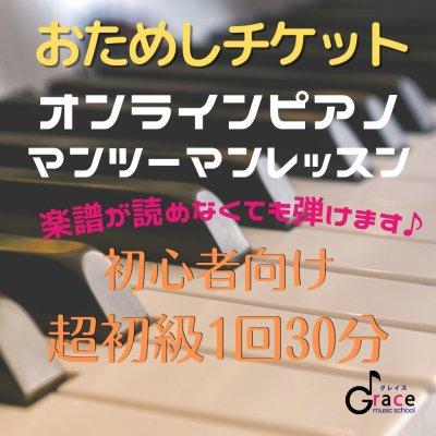 オンラインピアノマンツーマンレッスン 超初級 お試し1回30分受講チケット