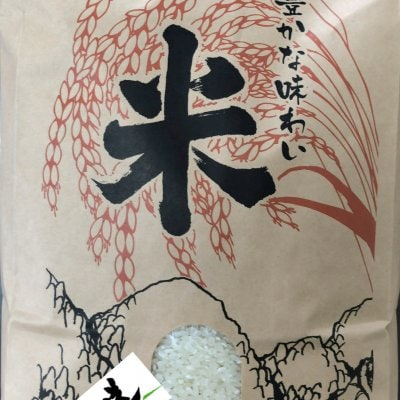 令和3年新米コシヒカリ 5kg 白米