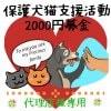 【代理店限定】保護犬猫支援活動2000円募金*沖縄