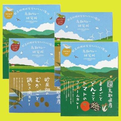 ★野菜料理研究家カノウユミコ監修【絶品レトルトカレーセット】2個×2個