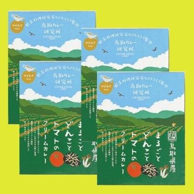 ★野菜料理研究家カノウユミコ監修【鳥取県産まるごとどんことトマトのク...