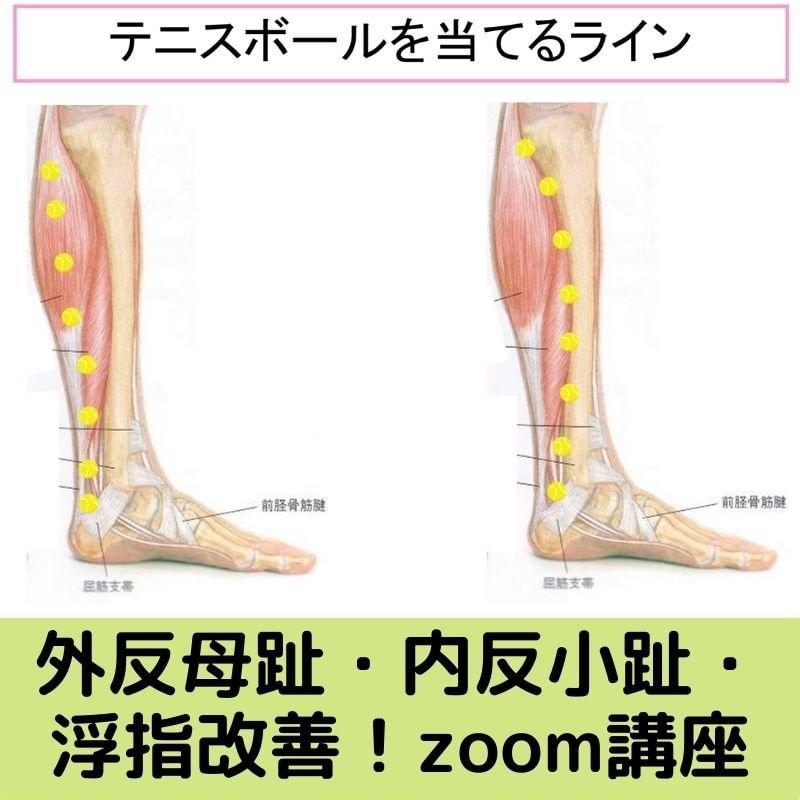 「外反母趾・内反小趾・浮指・むくみ改善!下腿・アロマセルフマッサージzoom講座」14名限定のイメージその2