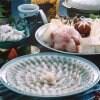 【豪華とらふぐ】ふぐ鍋とお刺身のセット・下関ふぐ屋自慢の逸品【送料無料】
