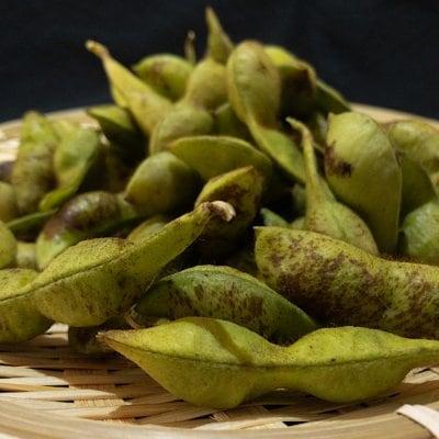 令和2年10月収穫/丹波篠山産黒枝豆・鞘豆【予約】