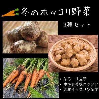 送料無料|冬のホッコリ野菜セット【3品】