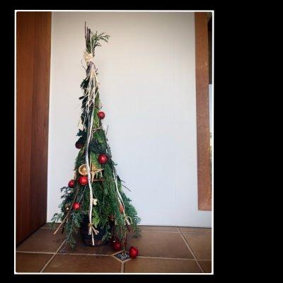 森の香り漂うgajuのクリスマスツリー2020