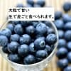 摘みたてフレッシュブルーベリー【大粒で甘みの強い品種】新鮮抜群500g×2パック
