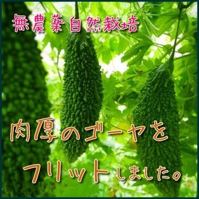 【季節限定!お取り寄せオオイタアリアン野菜】とろふわ!苦くない!光輪農...
